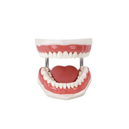 simulator perawatan gigi